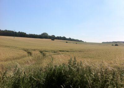 Crofton-parish-council-53